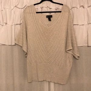 Lane Bryant Dolman Sleeve Silver Sweater Sz 22/24